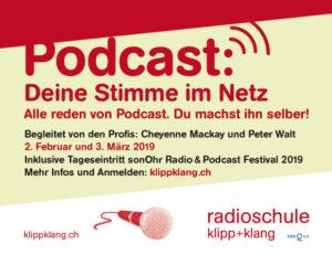 Podcast: Deine Stimme im Netz